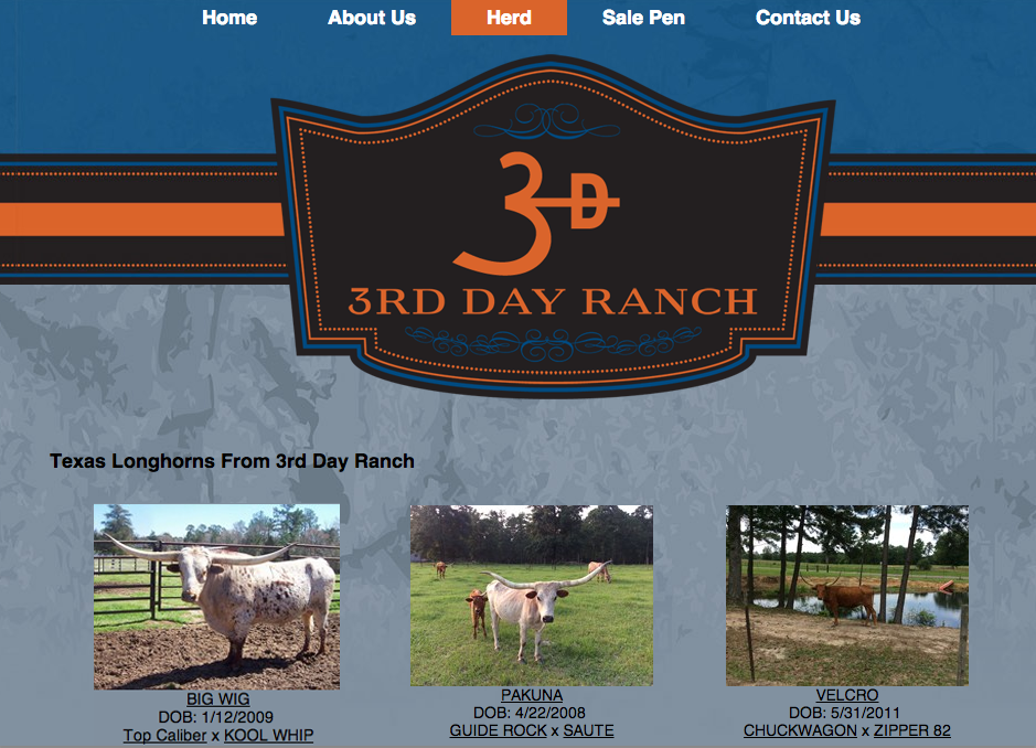 3rd DAy Ranch