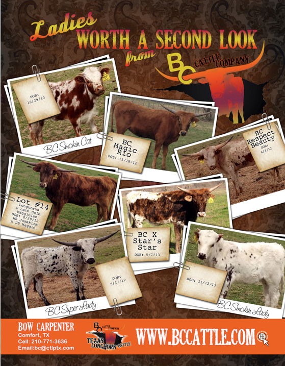 bc cattle company ad