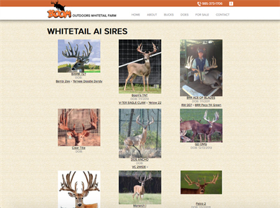 Boom Outdoors Whitetail Farm