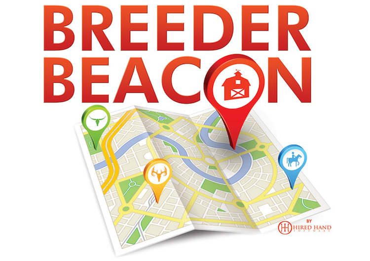 Breeder Beacon by Hired Hand