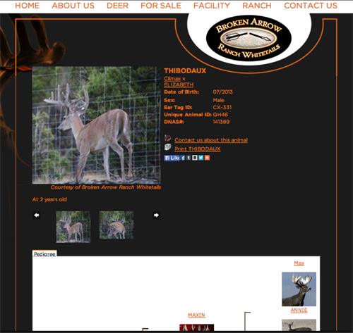 Broken Arrow Ranch Whitetails - Deer Page