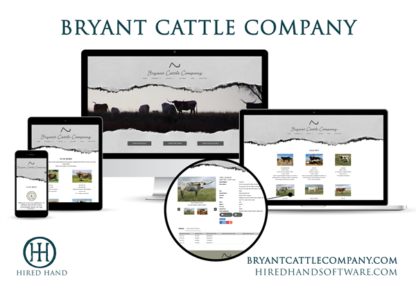 BryantCattleCo_WebsiteLaunch-01
