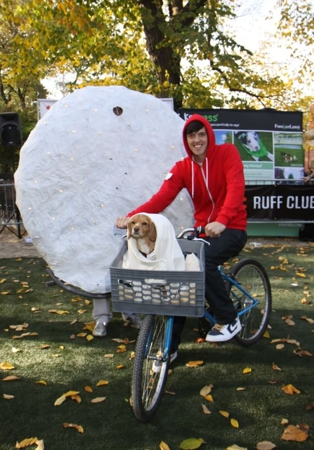 ET and Dog
