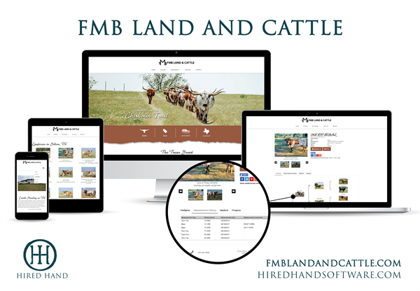 FMB_WebsiteLaunch-01