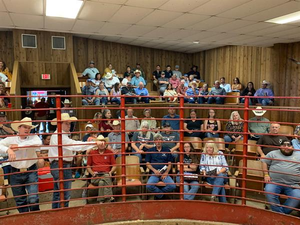 Full house at the annual Butler Breeders Invitational Sale