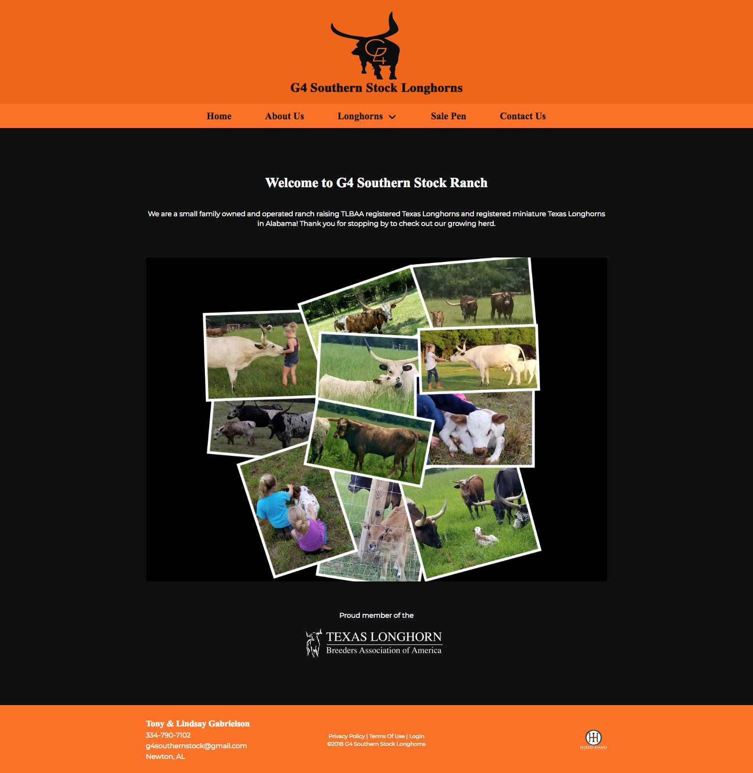 g4-southern-stock-longhorns_homepage
