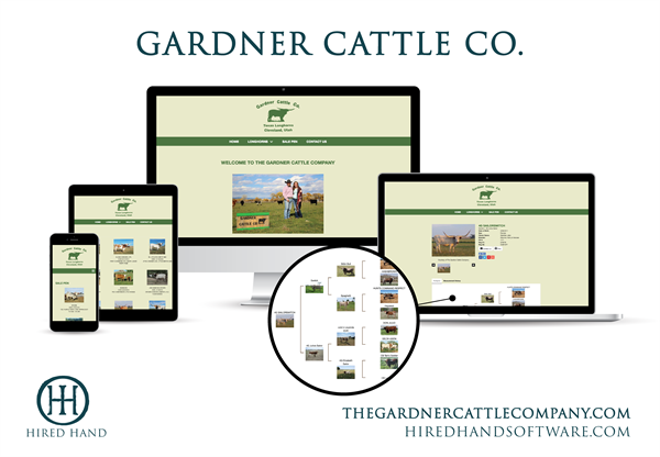 GardnerCattle_WebsiteLaunch-01