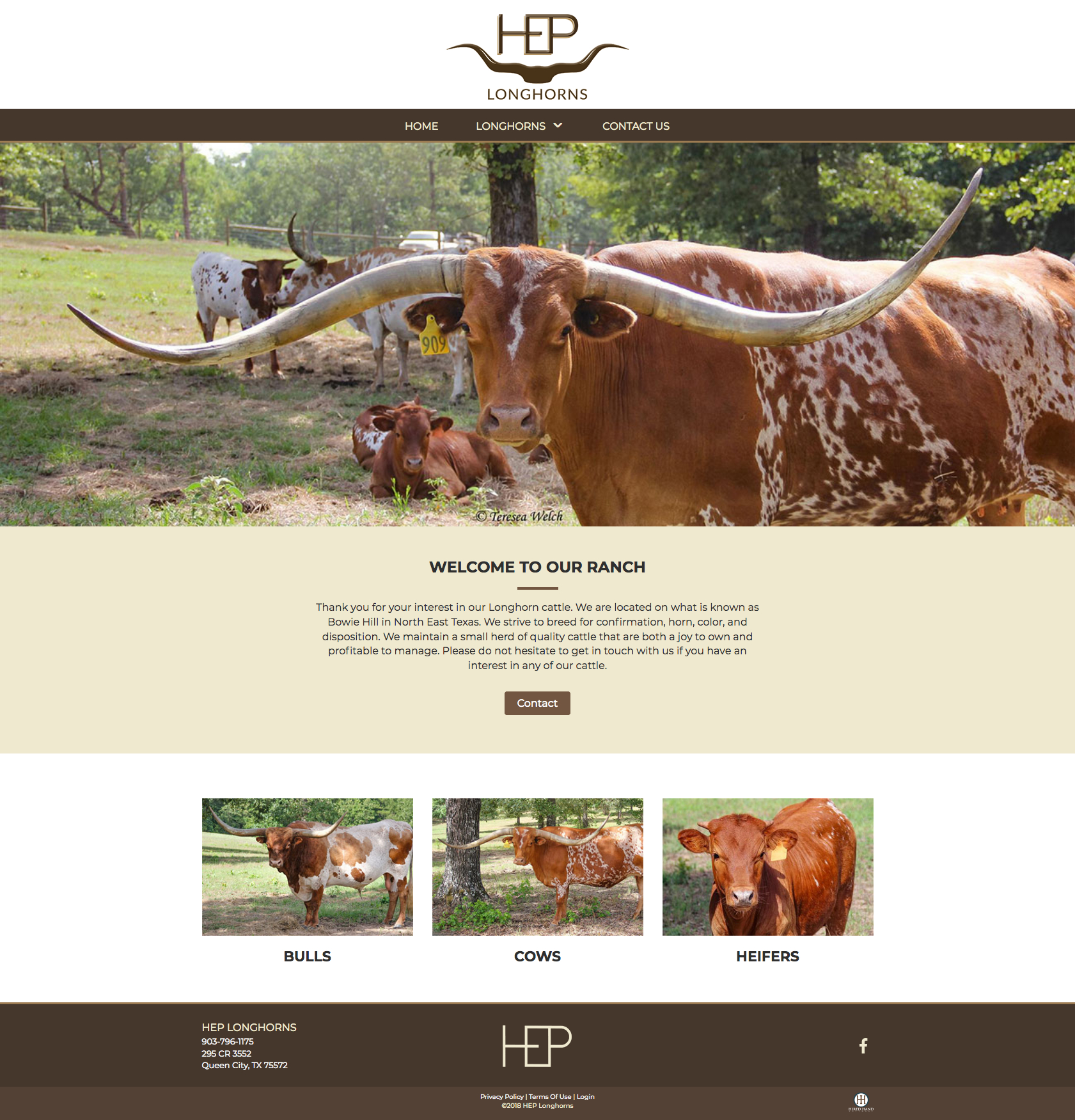 HEP-longhorns_homepage
