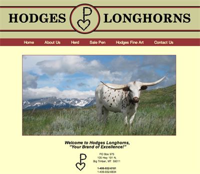 Hodges Longhorns