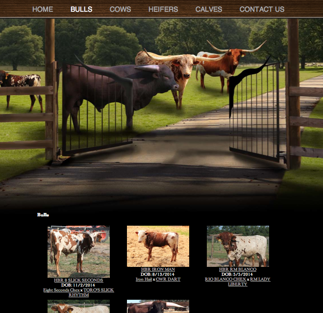 Home Branch Ranch-herd
