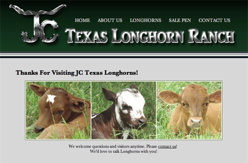 JC Texas Longhorn Ranch-home