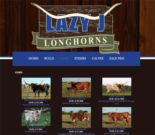 Lazy J Longhorns-herd