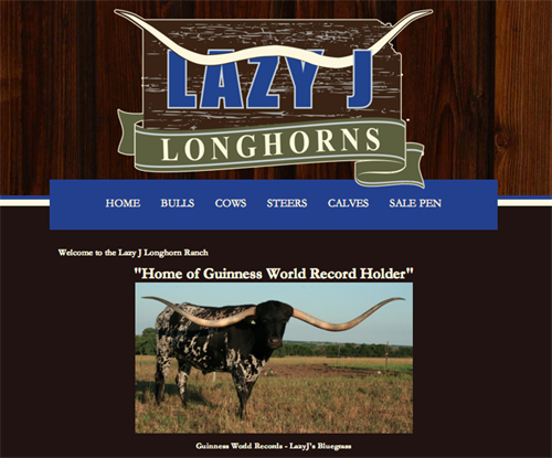 Lazy J Longhorns-home