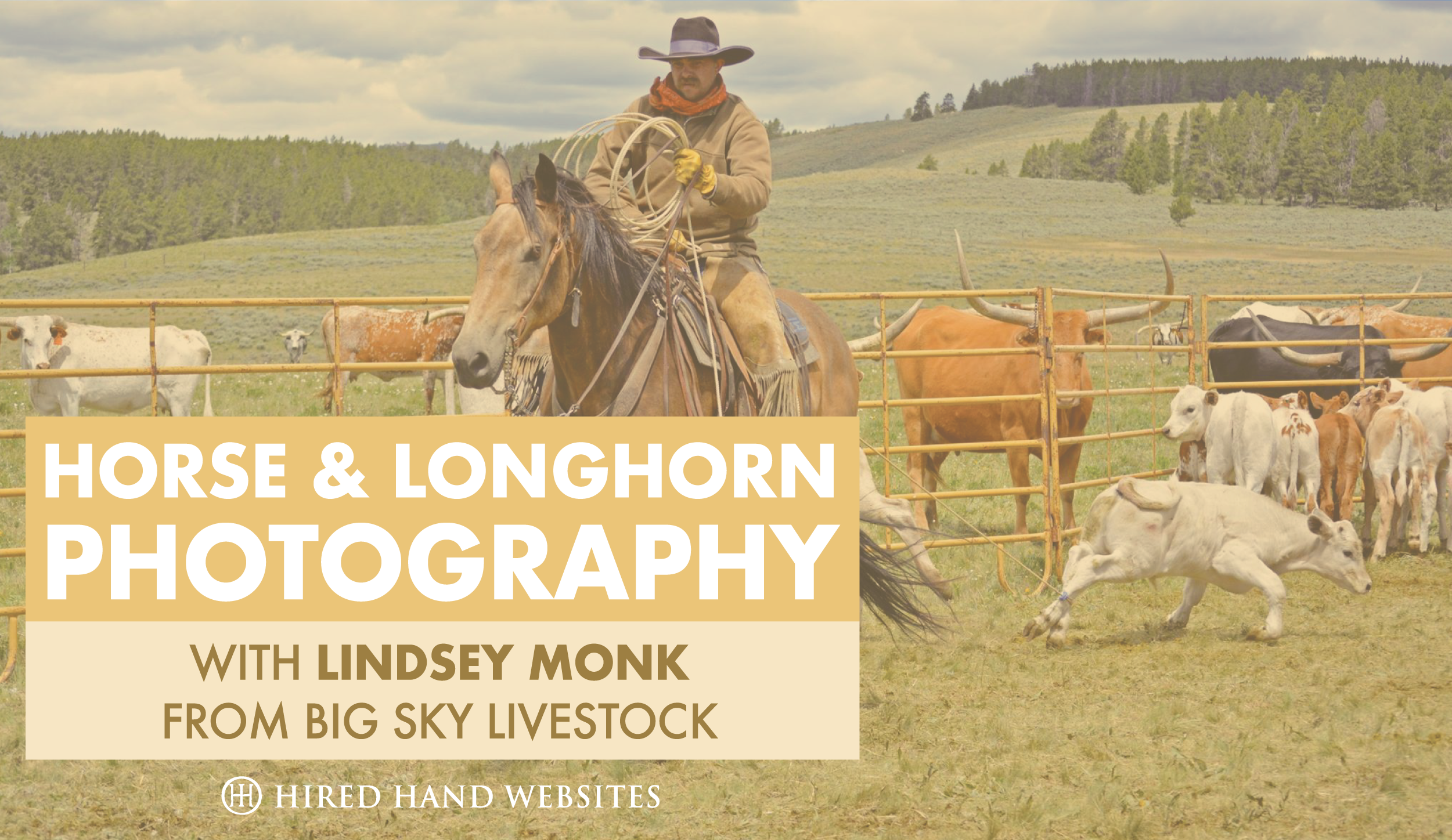 Lindsey Monk Photography