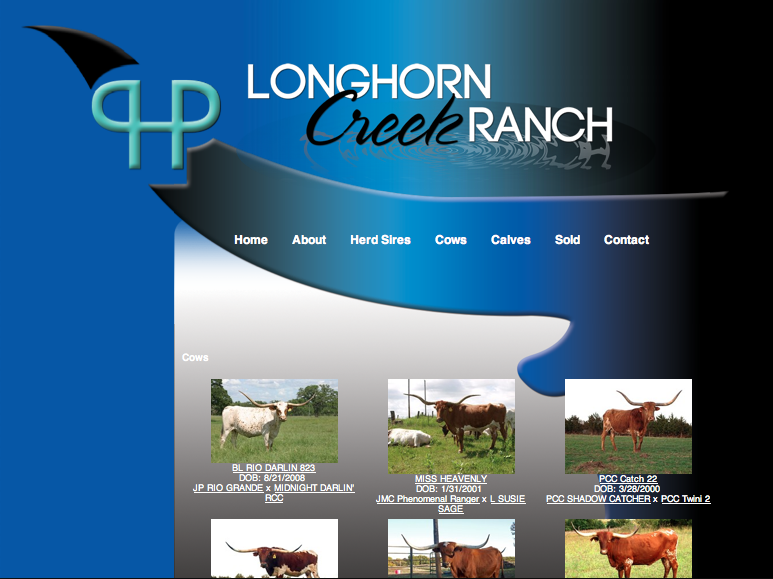 Longhorn Creek Ranch