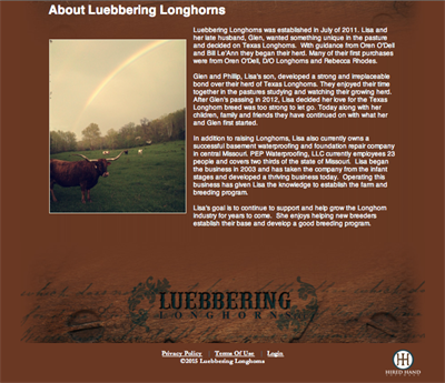 Luebbering About