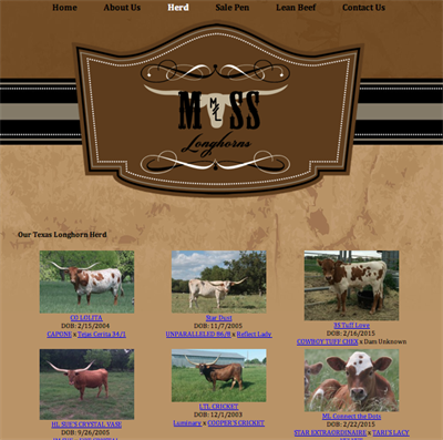 Moss Longhorns page 2