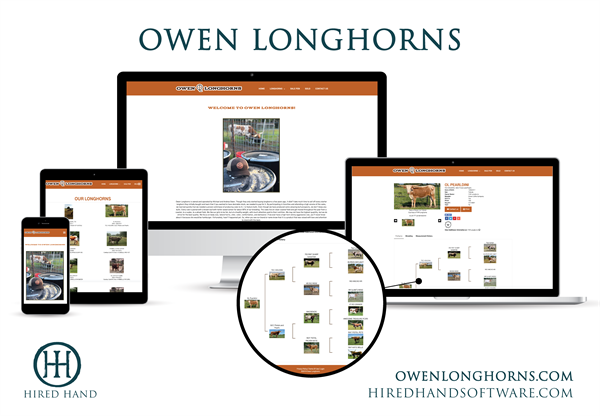 OwenLonghorns_WebsiteLaunch-01