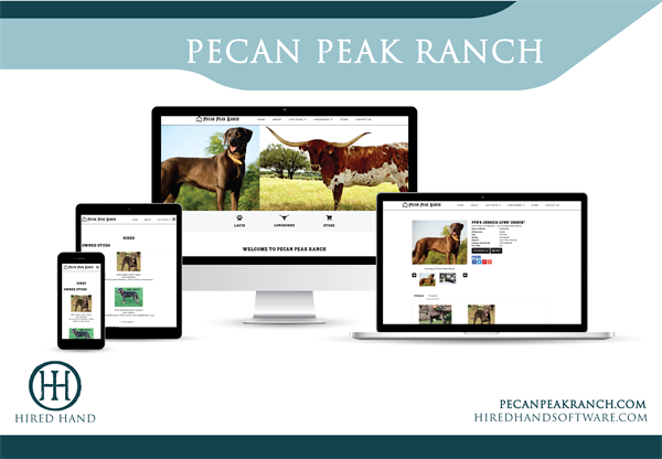 PecanPeak_WebsiteLaunch-02
