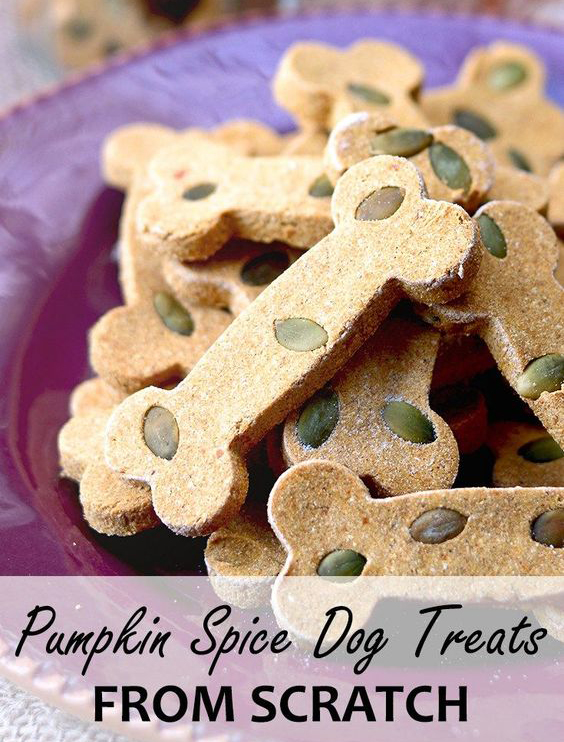 PS dog treats