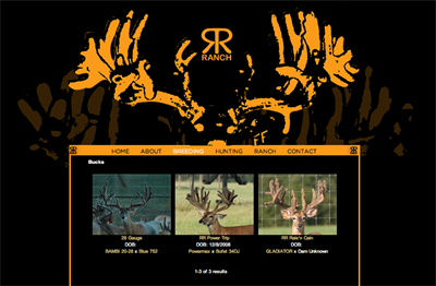RR Ranch homepage