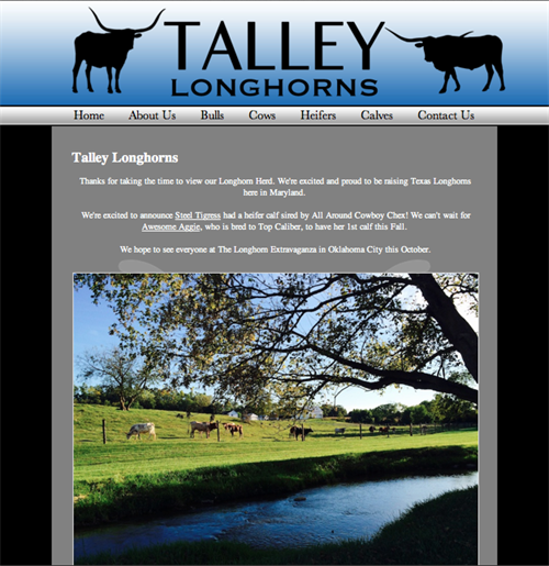Talley Longhorns-home