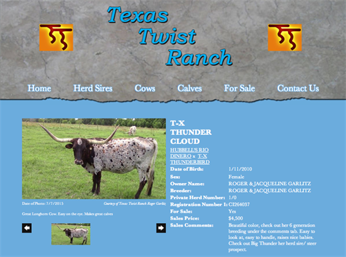Texas Twist Ranch - animal