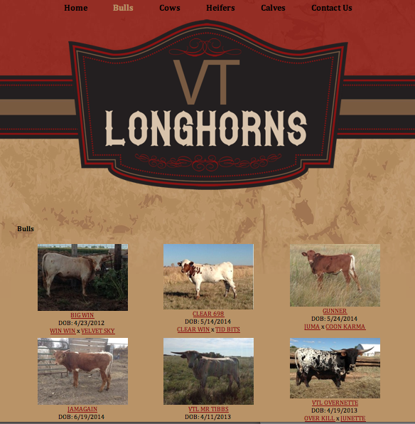 VT Longhorns Herd