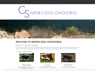 Water's Edge Longhorns
