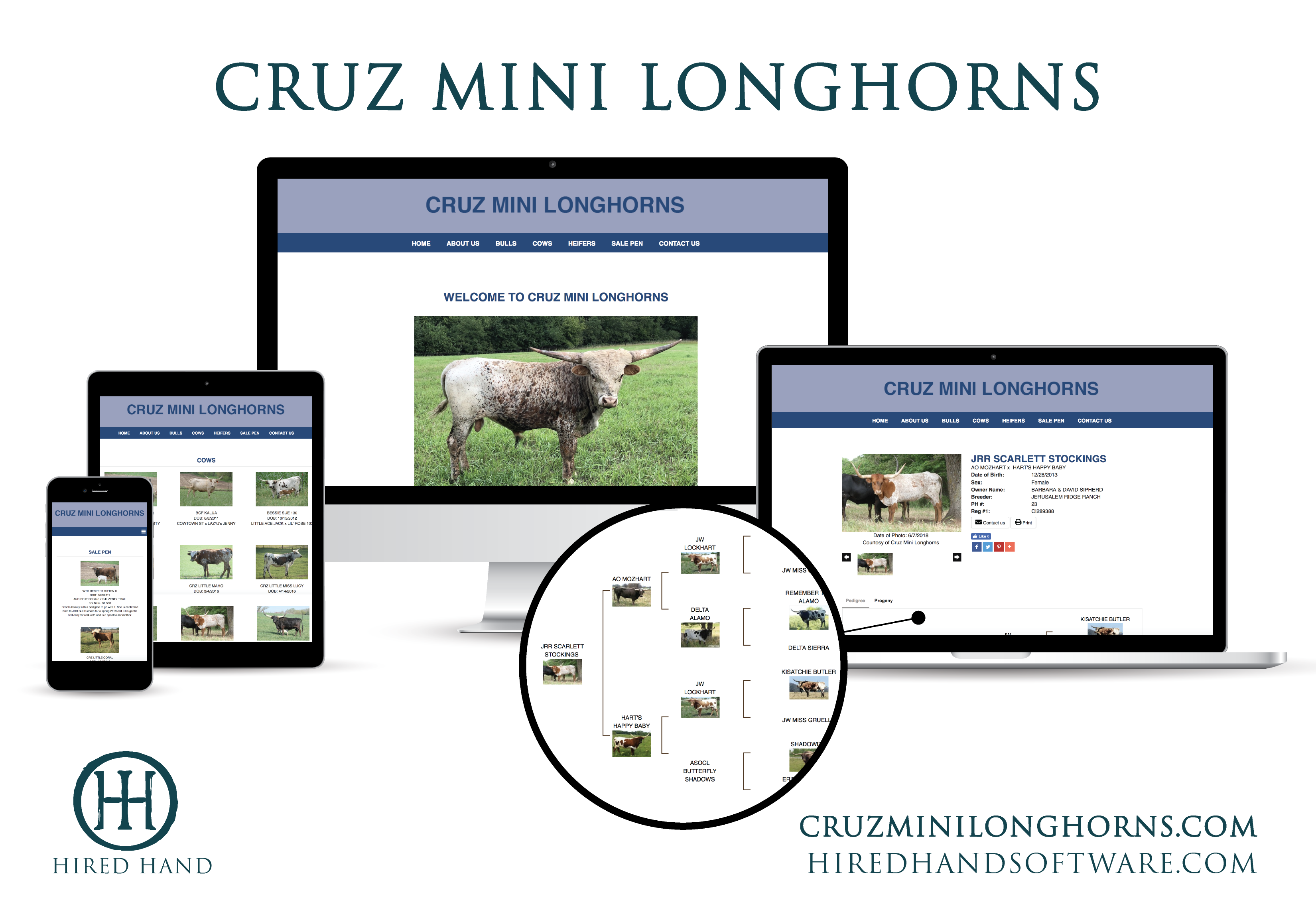 WebsiteLaunch_CruzMiniLonghorns-01