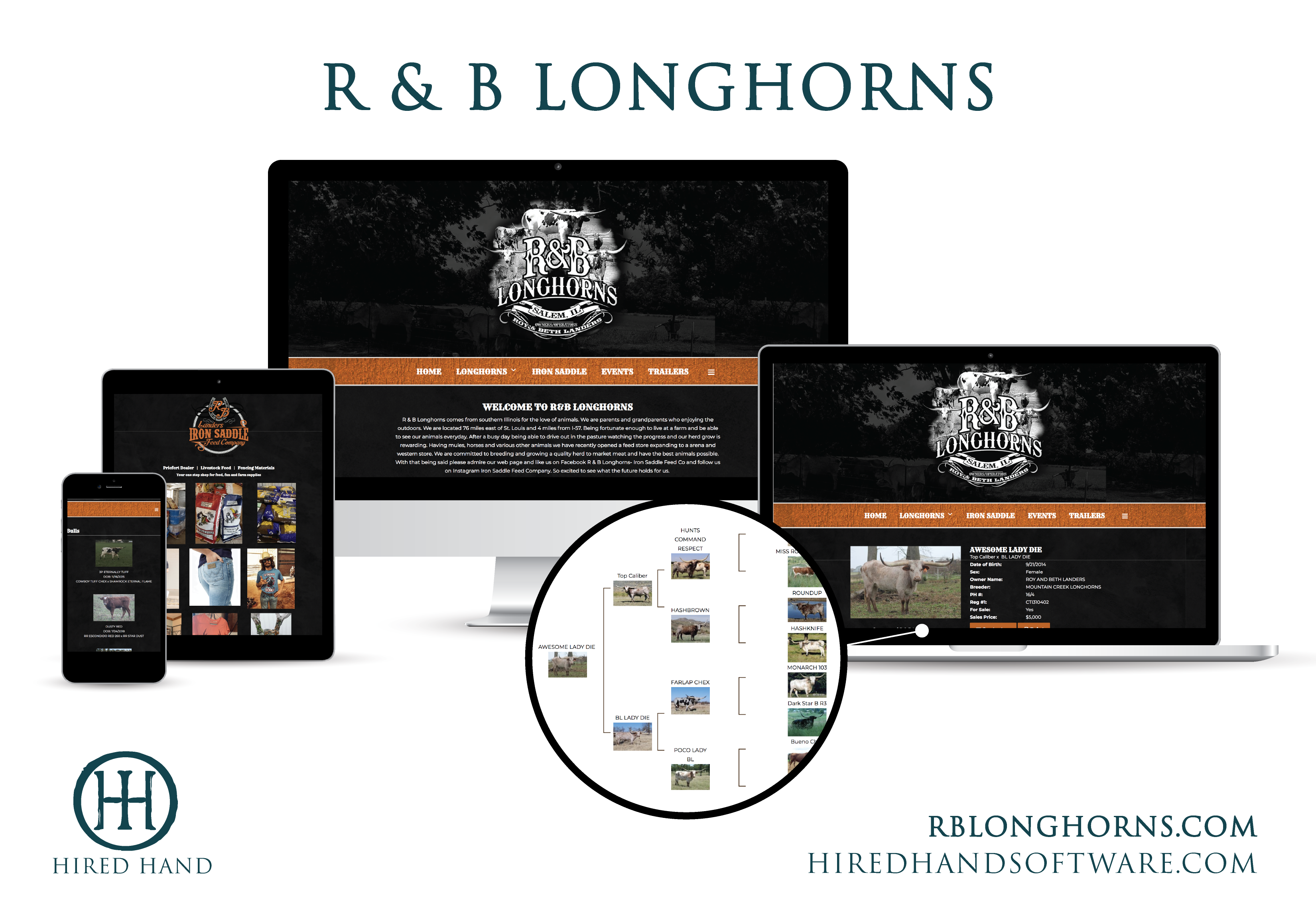 WebsiteLaunch_RBLonghorns-01